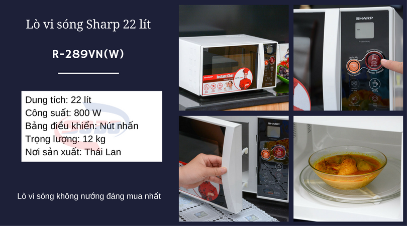 lo vi song sharp R 289VN(W)
